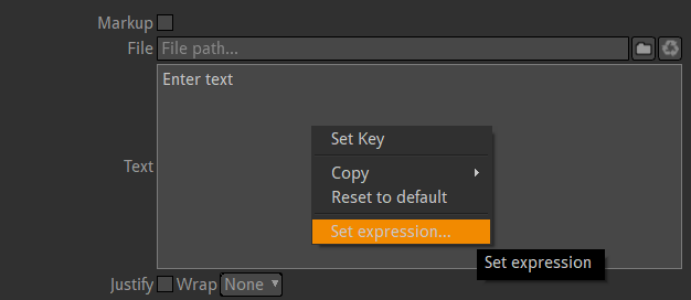Set expression onto the Text field